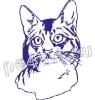 фото-печать любимой кошки